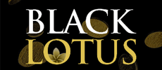 Black Lotus Casino logo