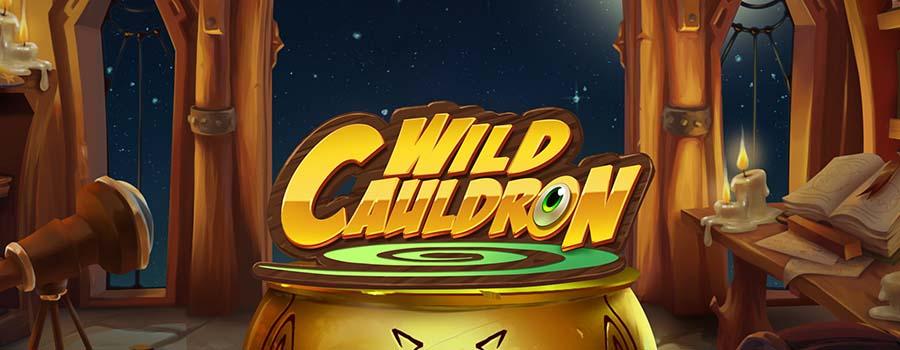Wild Cauldron slot review