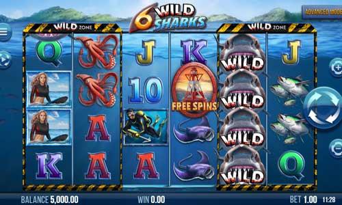 6 Wild Sharks Videoslot Screenshot