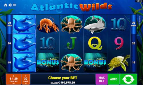 Atlantic Wilds Videoslot Screenshot