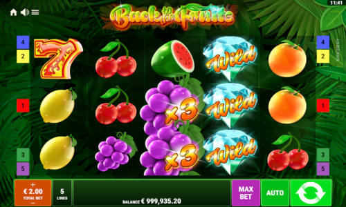 Back to the Fruits Videoslot Screenshot