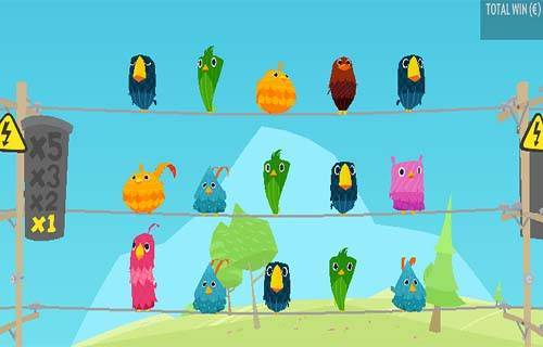 Birds On A Wire Videoslot Screenshot
