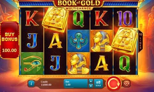 Book of Gold Multichance Videoslot Screenshot