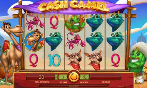 Cash Camel slot