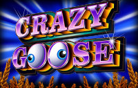 Crazy Goose slot
