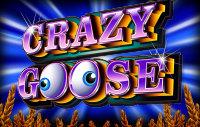 Crazy Goose logo