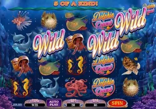Dolphin Quest Videoslot Screenshot