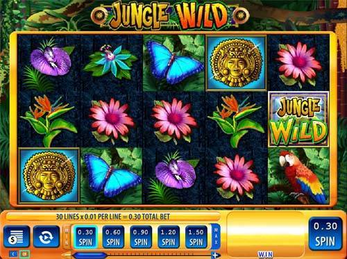 Jungle Wild Videoslot Screenshot