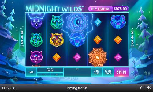 Midnight Wilds Videoslot Screenshot