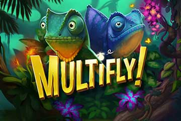 Multifly slot free play demo