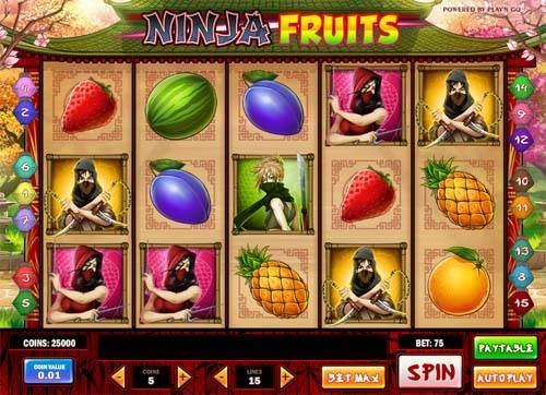 Ninja Fruits slot free play demo