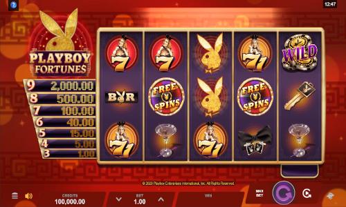 Playboy Fortunes slot