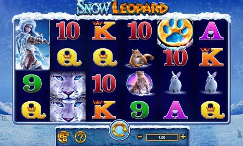 Snow Leopard Videoslot Screenshot