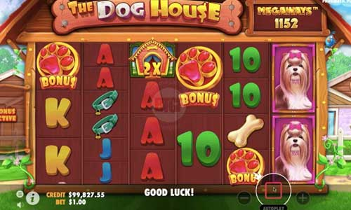the dog house megaways slot overview and summary