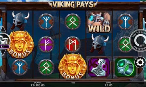 Viking Pays Videoslot Screenshot