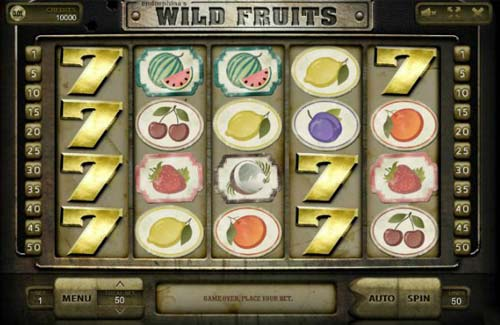 Wild Fruits slot