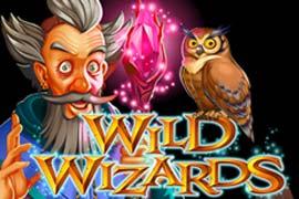 Wild Wizards slot free play demo