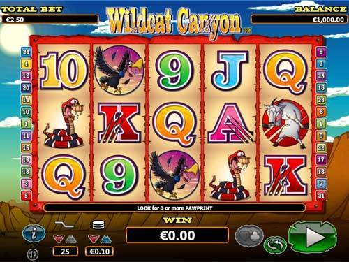 Wildcat Canyon slot