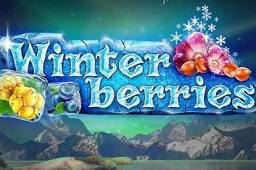 Winter Berries slot free play demo