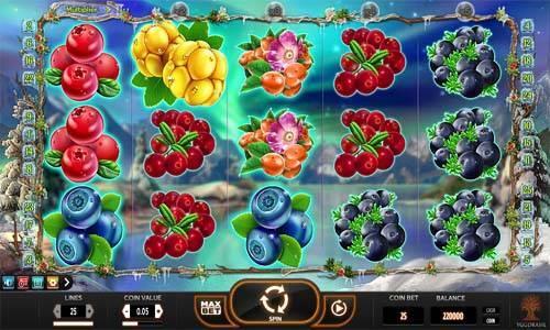 Winter Berries Videoslot Screenshot